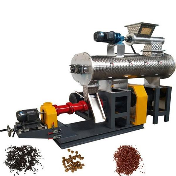 Automatic Wet Pet Dog Food Pellet Food Manufacturing Processing Equipment.