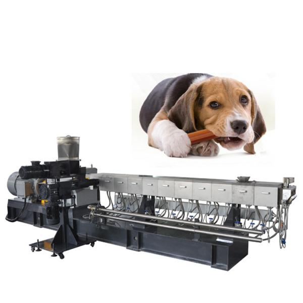 Electric Hr10L Small Scale Sausage Making Plant Hot Dog Sausage Maker Machine Automatic Sausage Filler